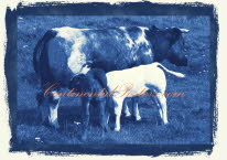 Cow with calves blue 2, Rinder